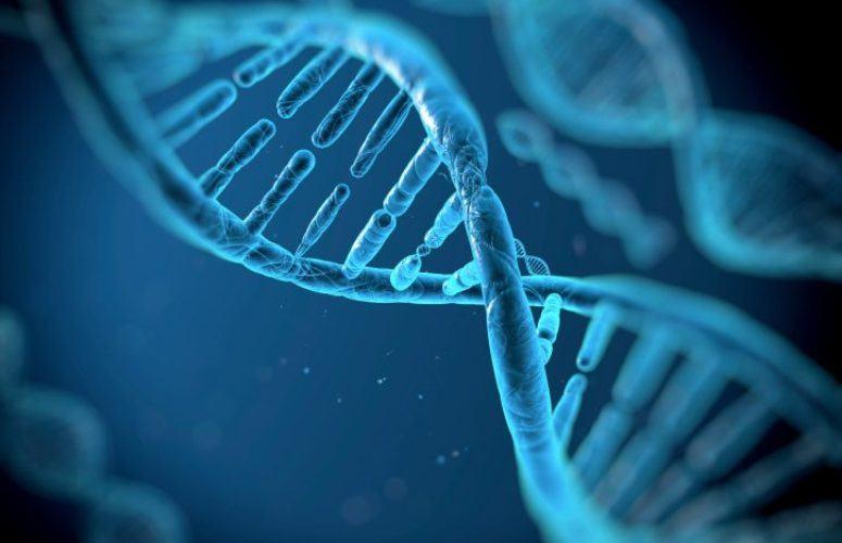 DNA biotech